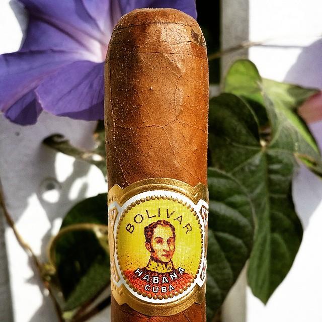 Bolivar Petit Corona Mareva Cuban Cigar