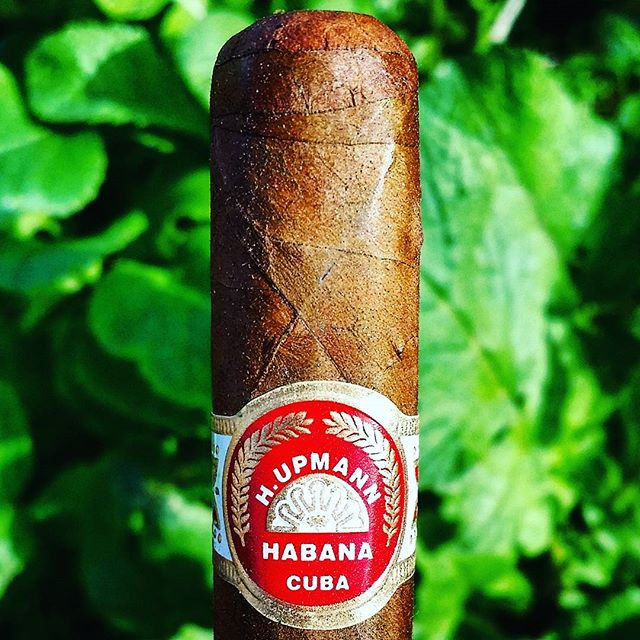 H. Upmann petit corona cuban cigar