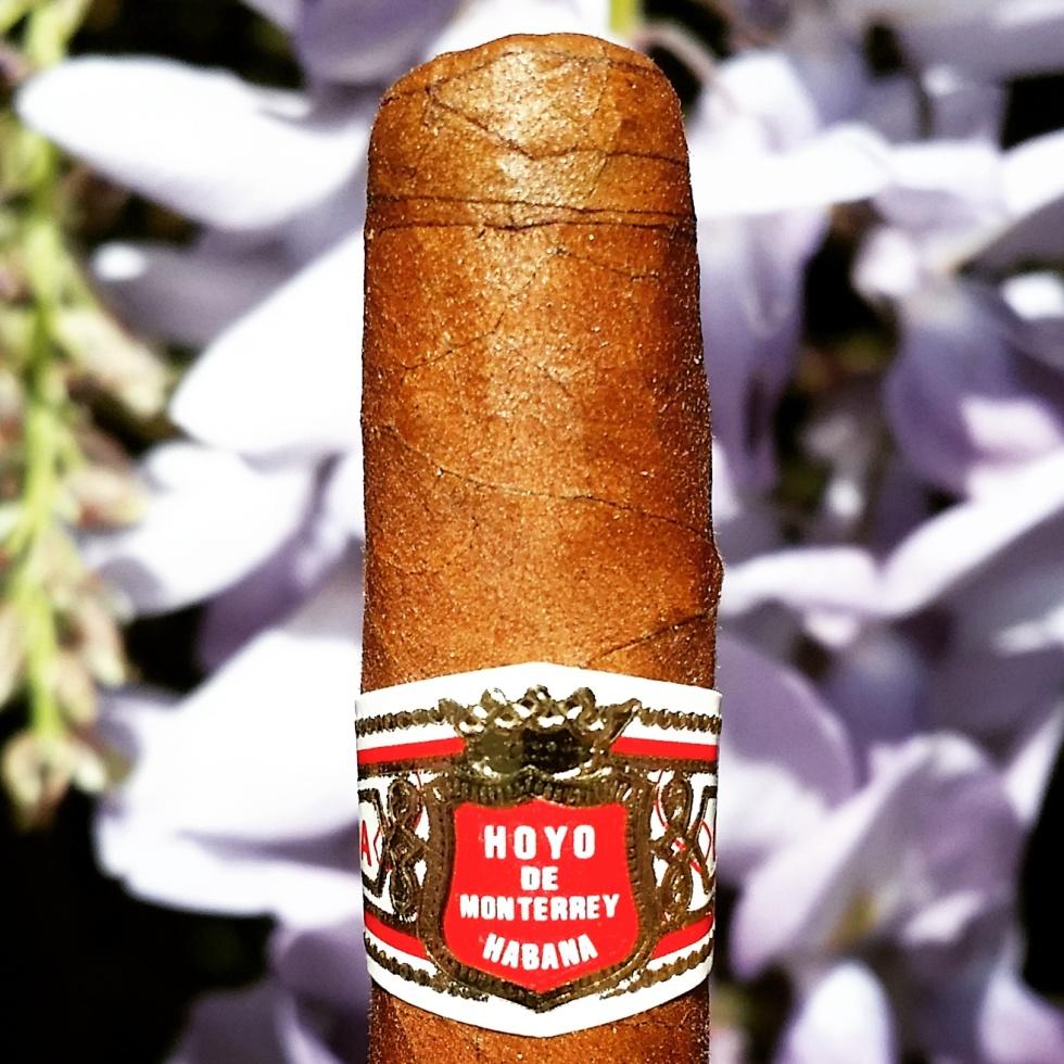 Hoyo De Monterrey Le Hoyo Du Marie Cuban Cigar