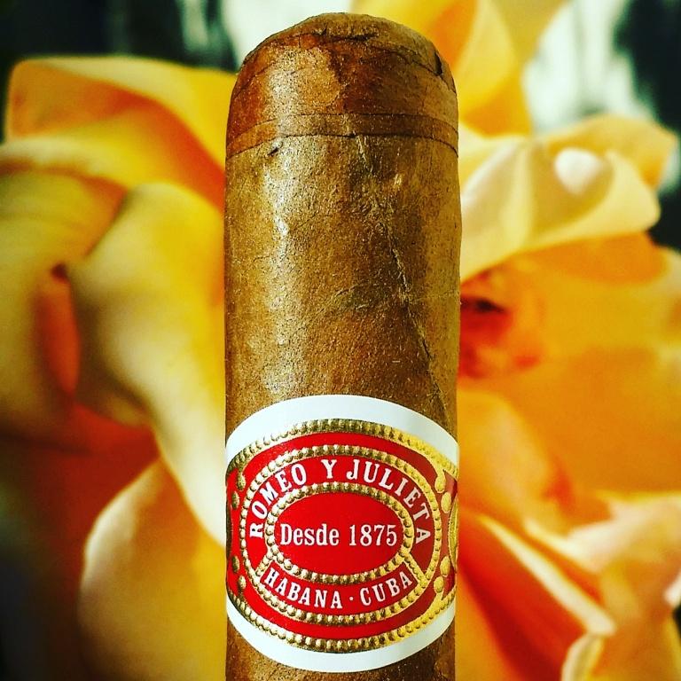 romeo y julieta petit corona cuban cigar
