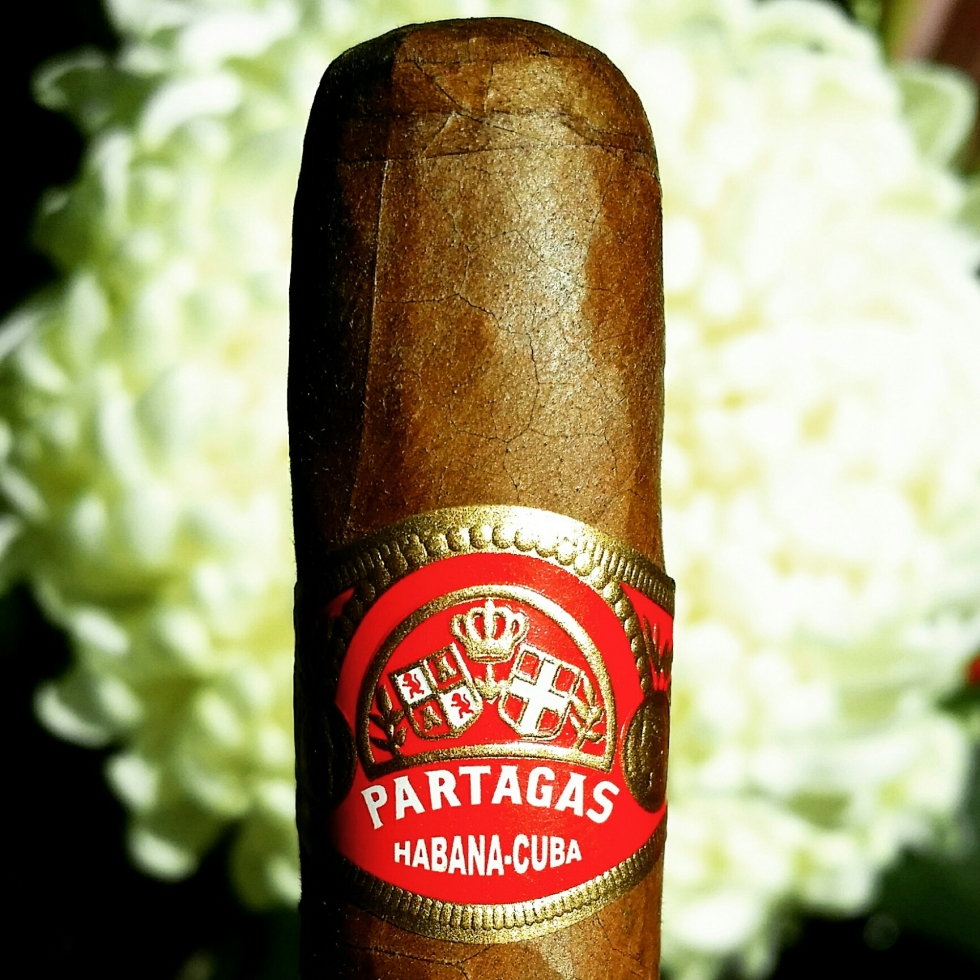 partagas shorts cuban cigar