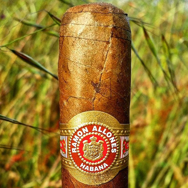 Ramon Allones Specially Selected Cuban Cigar