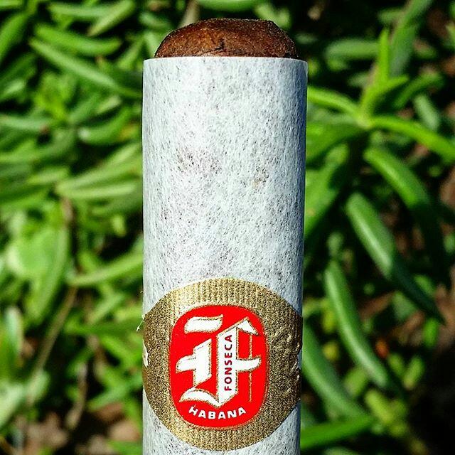 Fonseca Cosacos Cuban Cigar